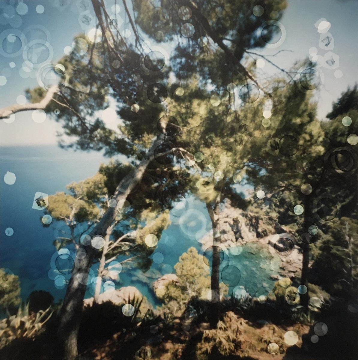 Jardi Botanic de Cap Roig, Spain (sea view) (2019)