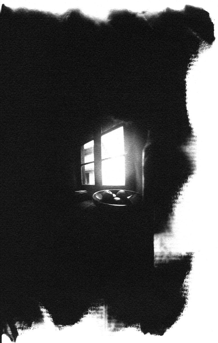 "Maison Rustique Still Life. Silver print 9 ½"" x 6"" (2003)."